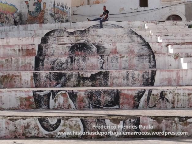 Um elefante em Azamor