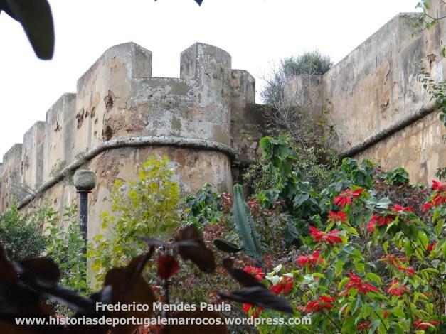 castelo-das-cegonhas-4